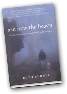 Ask Now the Beasts, by Ruth Rudner